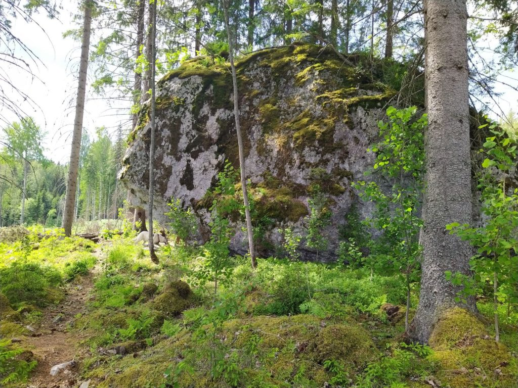 Kupparin kivi