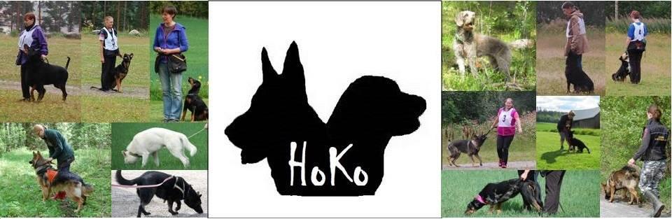 Hollolan koiraharrastajat